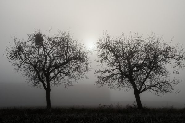 vincent eschmann photography istanbul-3