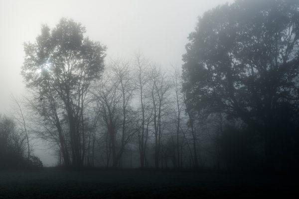 vincent eschmann photography_-2